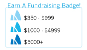 Earn a Fundraising Badge