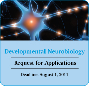Developmental Neurobiology RFA